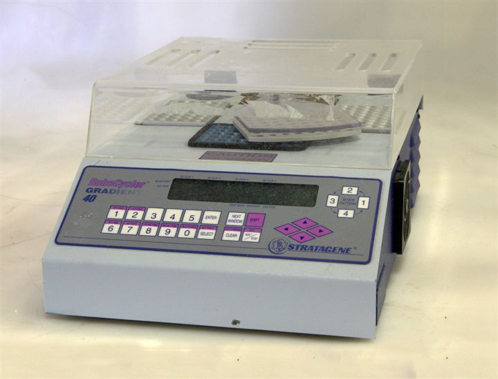 Stratagene Robocycler Gradient 40 Thermal Cycler