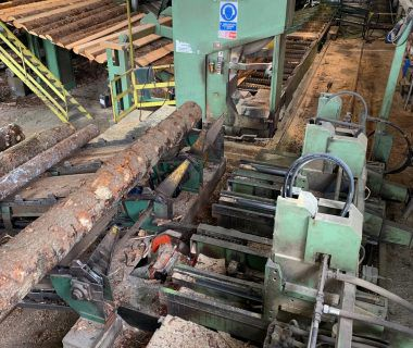 CFE, Primultini 1600 SAWMILL with cutter