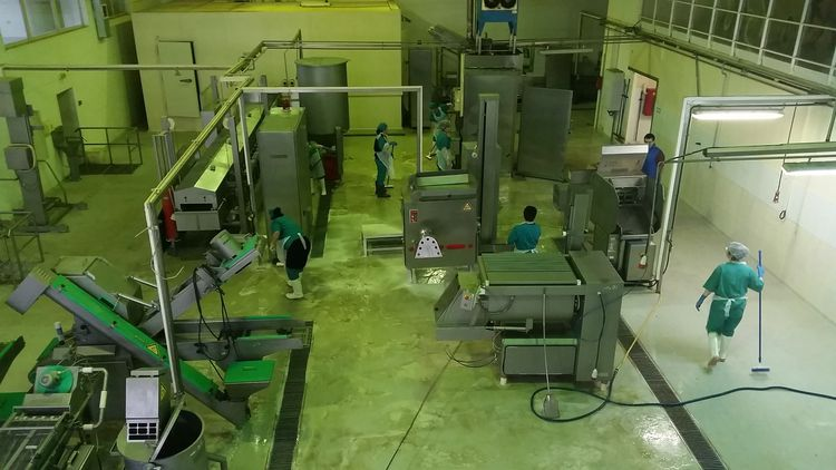 Others Production Line For Semi-Finished Foods