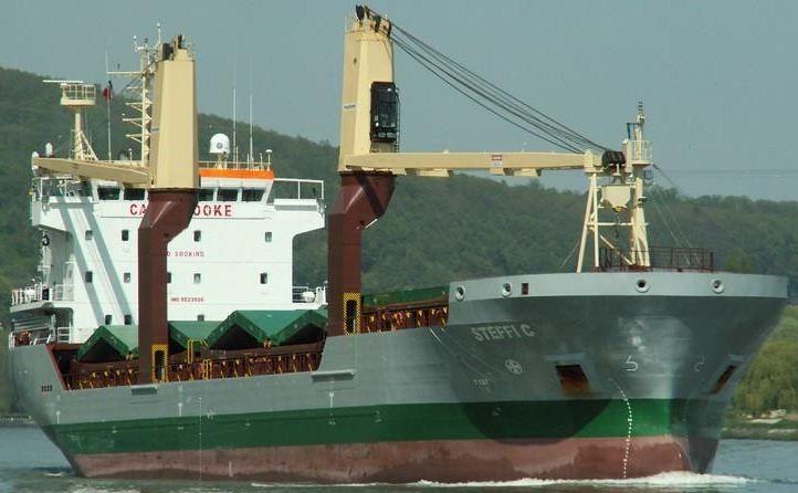 Jiangsu Yangzijiang Geared Single Deck Bulk Carrier 8077 DWT ON 7.1M DRAFT