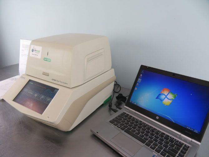 Bio-Rad CFX96, Real Time PCR System