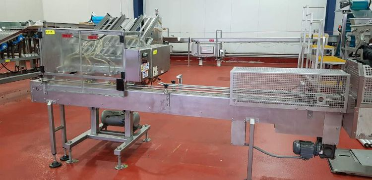 Thiele Reciprocating Placer Tray Denester with Slat Chain Conveyor