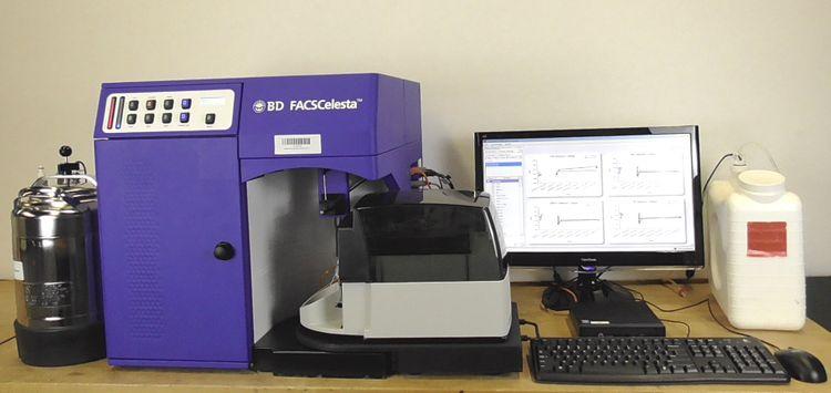 Becton Dickinson FACSCelesta  660344 Flow Cytometer