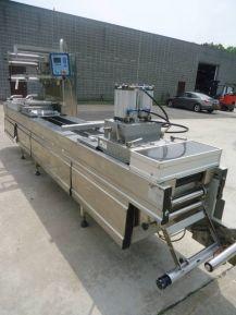 Multivac R230 HORIZONTAL FORM/FILL/SEAL VACUUM PACKAGING MACHINE