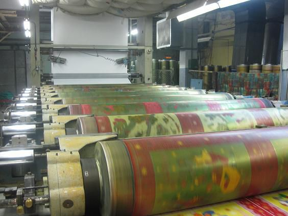 Reggiani Renoir 190 Cm Rotary Printing Machine