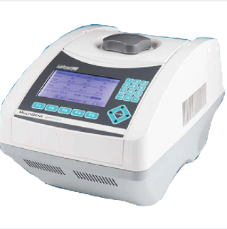 Labnet TC9610 Multigene Optimax Thermal Cycler