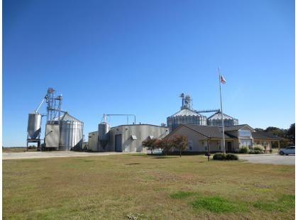 Bionerg Crush Extraction Plant 240 TPD