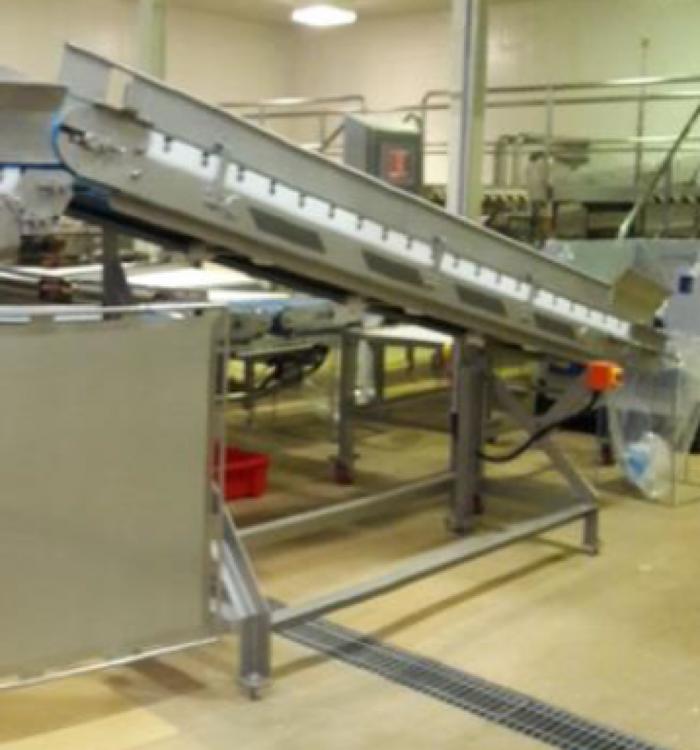 Tripack Auto infeed conveyor