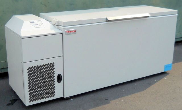 Thermo Freezer 20 cu.ft. (566-Liters)