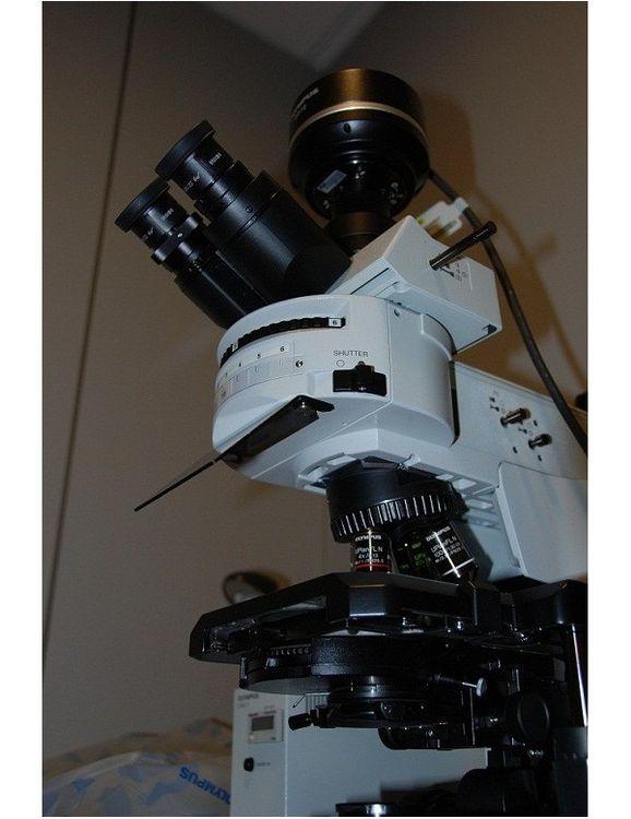 Olympus BX41 TF / URA / DP2, Trinocular fluorescence microscope