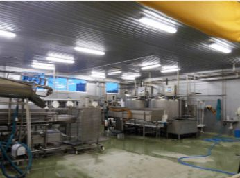 COMPLETE CHEESE MAKING FACTORY
