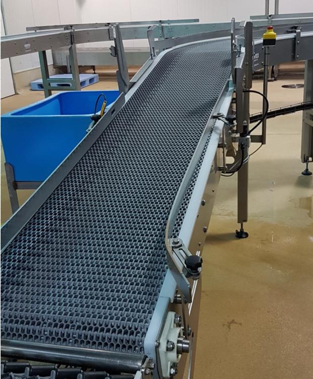 Vertex Conveyor to Vertical Form Fill Seal