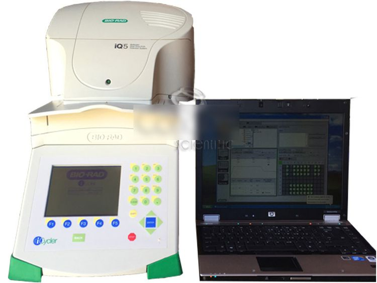 Biorad iQ5 Multicolor Real Time PCR Detection System