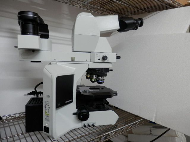 Olympus BX53F, Research Microscope