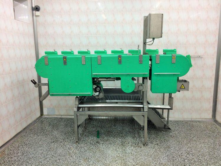 Meyn BC40 filleting machines