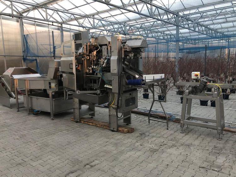 ABL PDS 50 Apple peeling machine