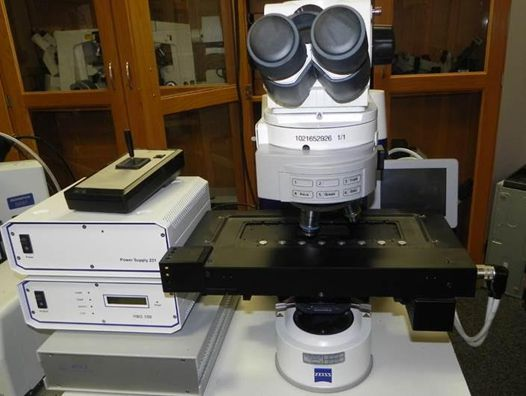 ZEISS Axio Imager M1, Compound Microscope